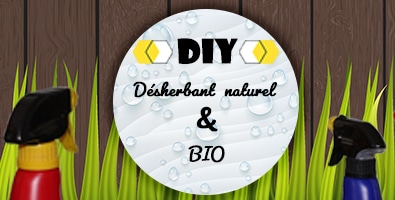 DIY désherbant naturel