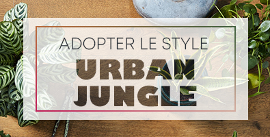 adopter un style urban jungle